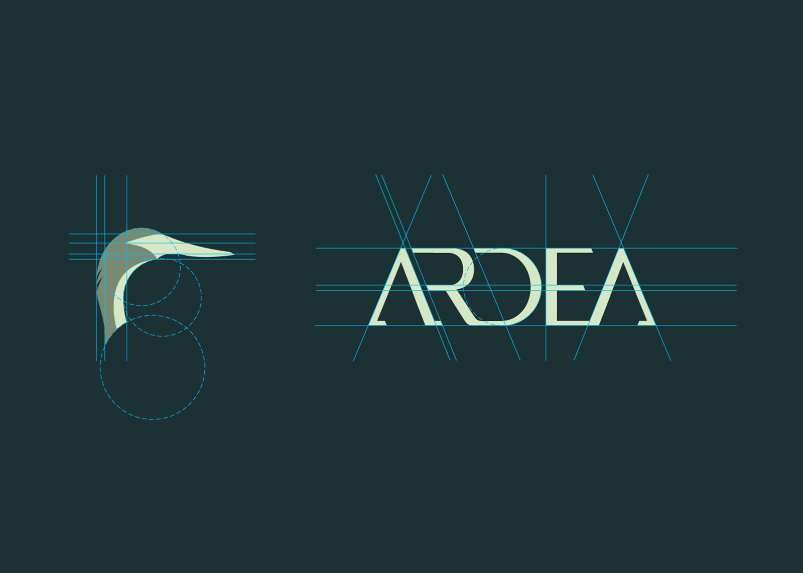 Ardea-construction_o